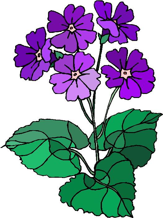 flowering plant clip art