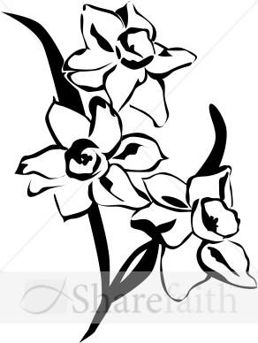 Daffodil Clipart Black And White | Clipart Panda - Free ...