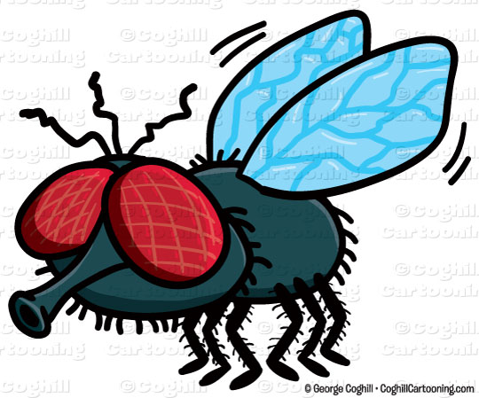 animated fly clipart - photo #23