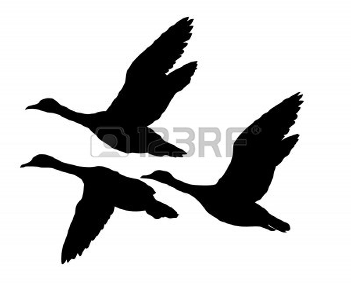 Flying Duck Silhouette | Clipart Panda - Free Clipart Images