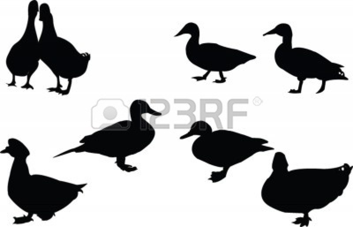Duck Hunting Silhouette | Clipart Panda - Free Clipart Images