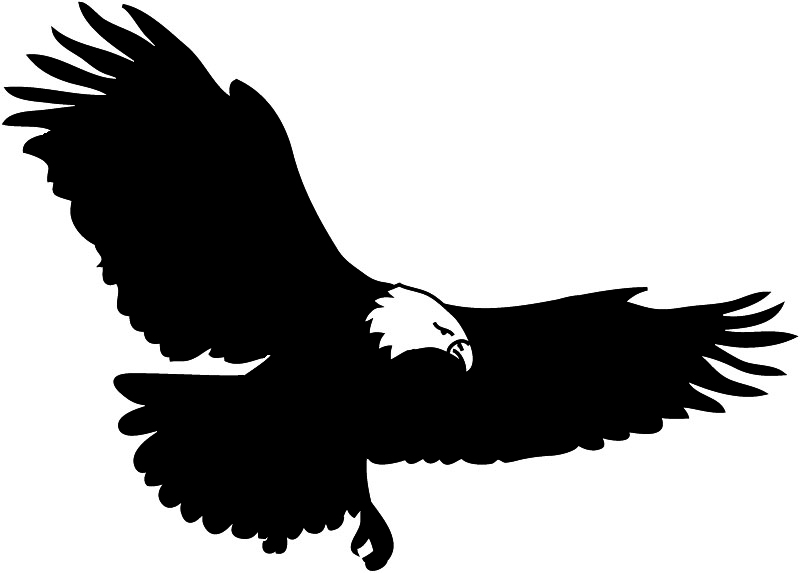 flying bald eagle clipart clipart panda free clipart images rh clipartpanda com Bald Eagle Silhouette Bald Eagle Silhouette