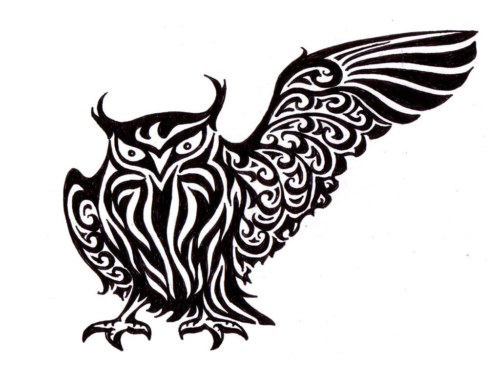 Flying Owl Drawing | Clipart Panda - Free Clipart Images