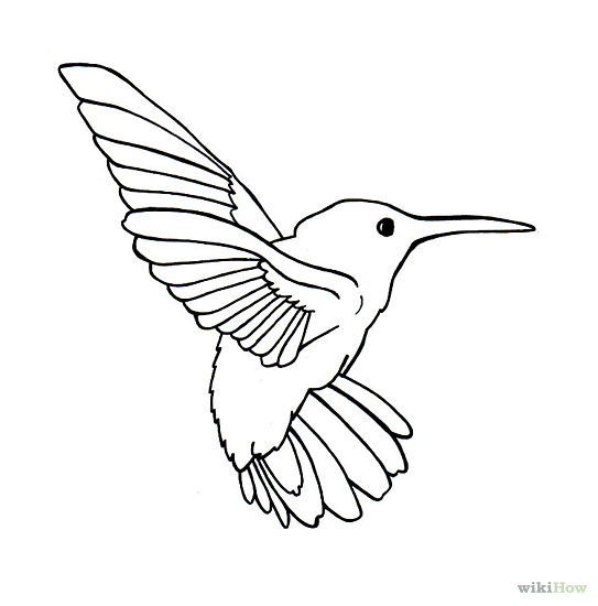 Simple Bird Line Art : Flying owl line drawing clipart panda free images