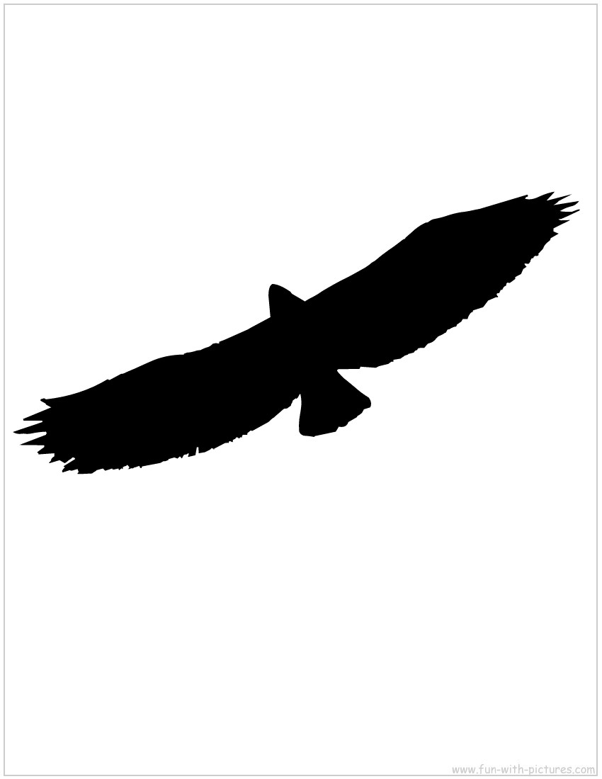 flying%20owl%20silhouette