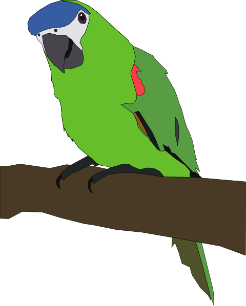 Flying Parrot Clipart Clipart Panda Free Clipart Images