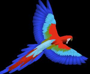 Parrot clip art - vector clip