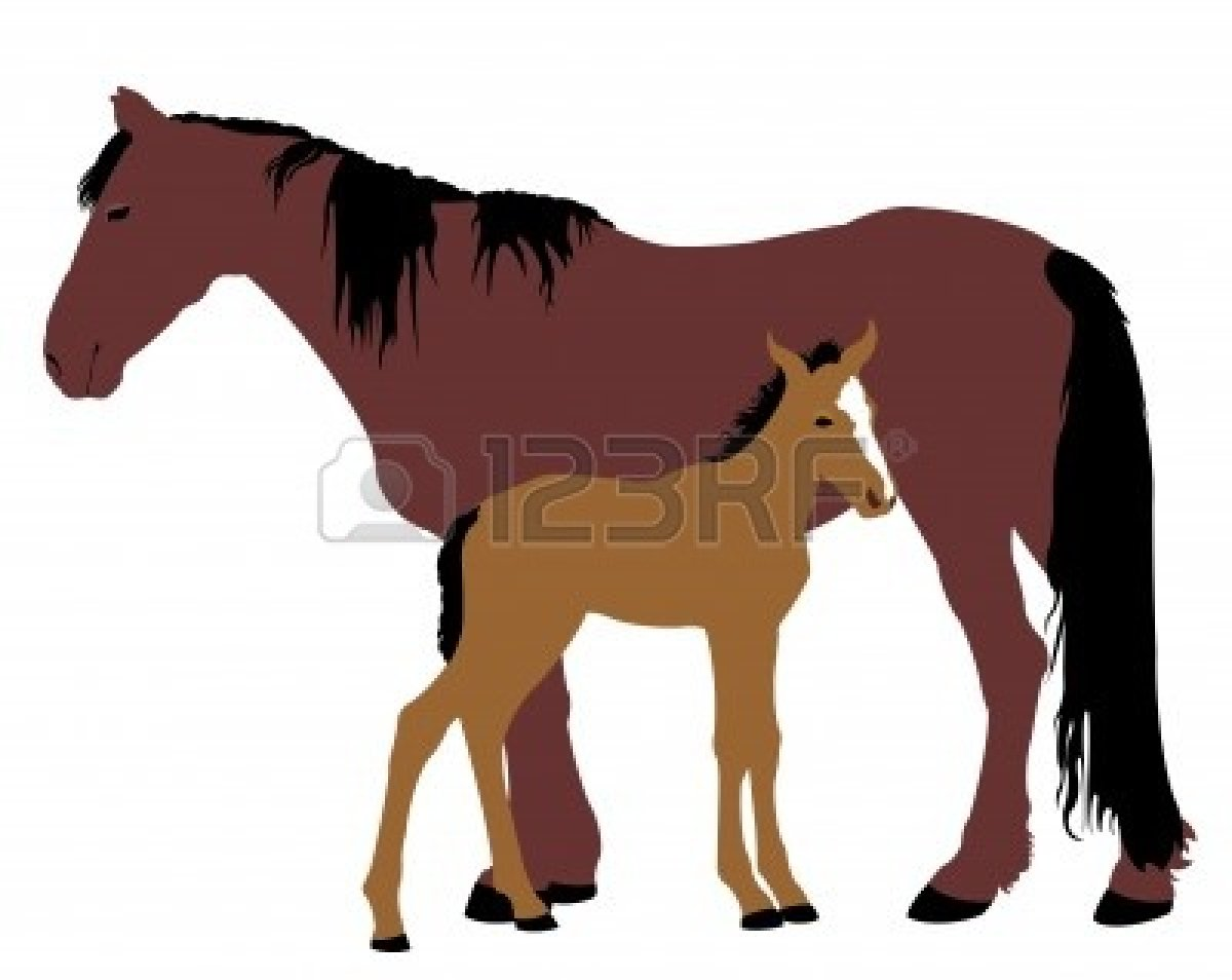 Foal clipart clipart panda free clipart images for Clipart mare