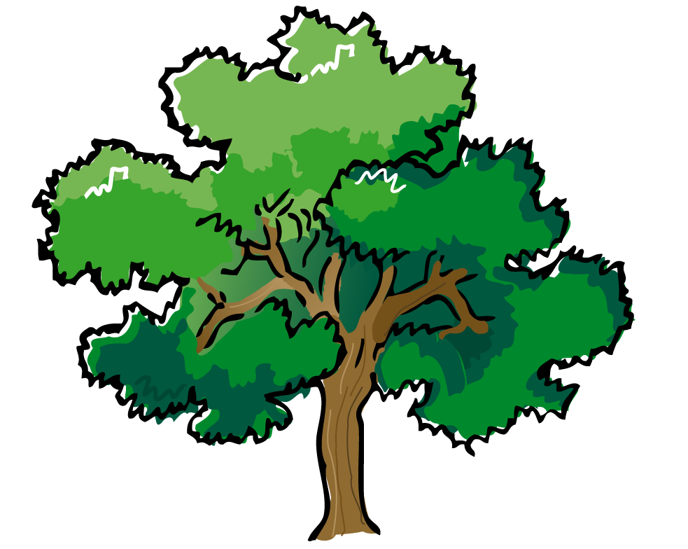 Forest Trees Clip Art Pine Tree Clipart Png ...