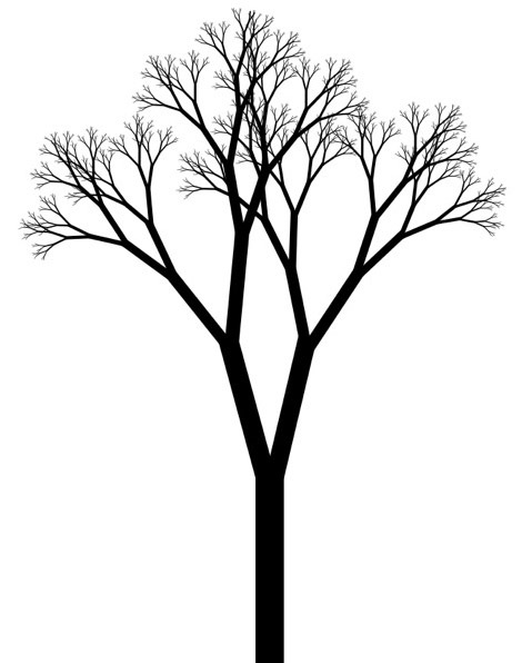 Forest Trees Drawing | Clipart Panda - Free Clipart Images