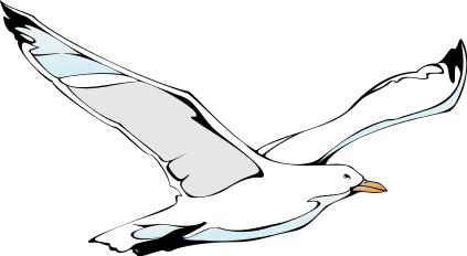 seagull clipart clipart panda free clipart images seagull clip art with eyes seagull clip art pattern