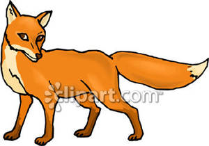 red fox clip art clipart panda free clipart images rh clipartpanda com red fox clipart red fox clipart free
