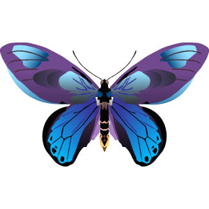 butterfly clipart clipart panda free clipart images rh clipartpanda com free clipart of butterflies images free clipart of butterflies and flowers
