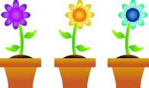 Clip Art Free Images Spring