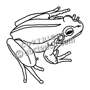 Frog clip art black and white clipart panda free for Frog life cycle coloring page
