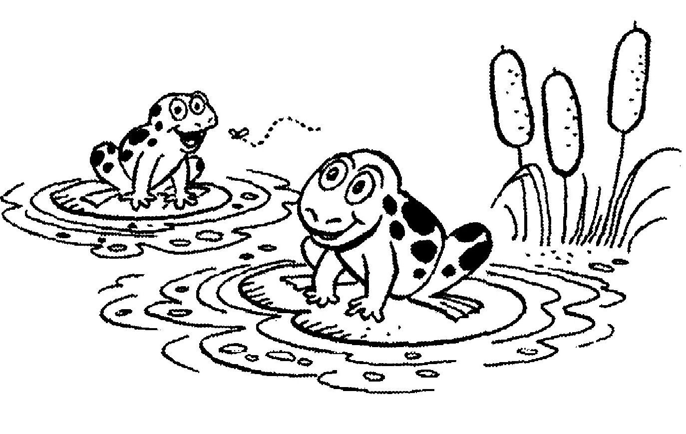frog on lily pad coloring page clipart panda free clipart images