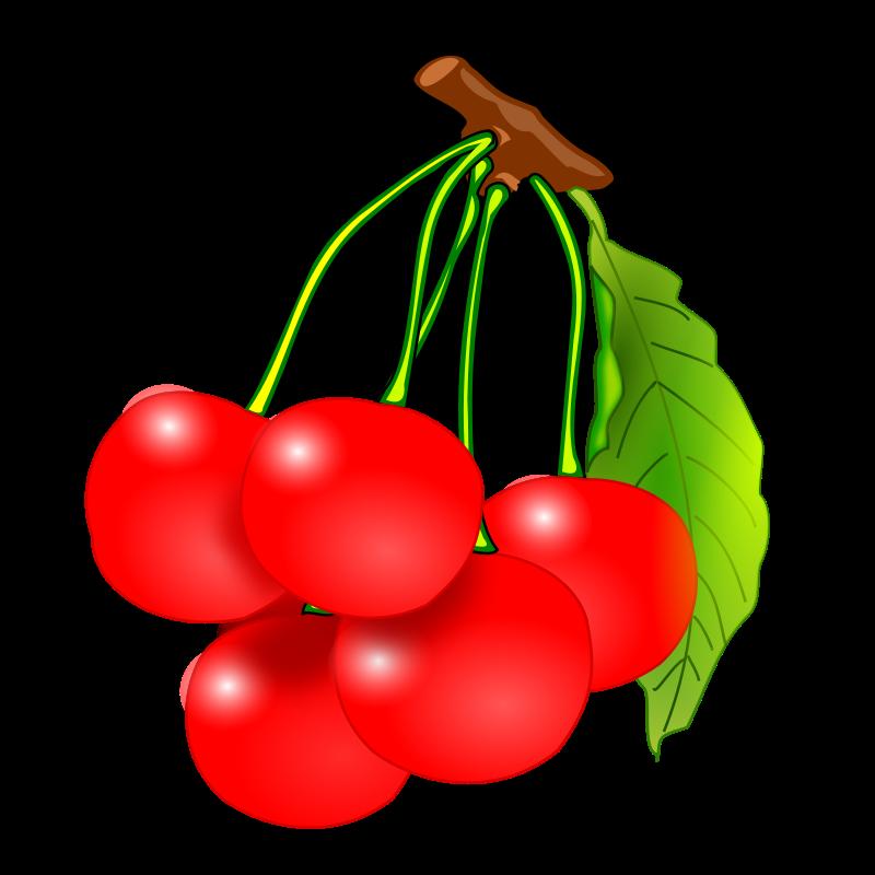 fruits clip art download clipart panda free clipart images rh clipartpanda com fruit clip art for coloring fruit clipart image
