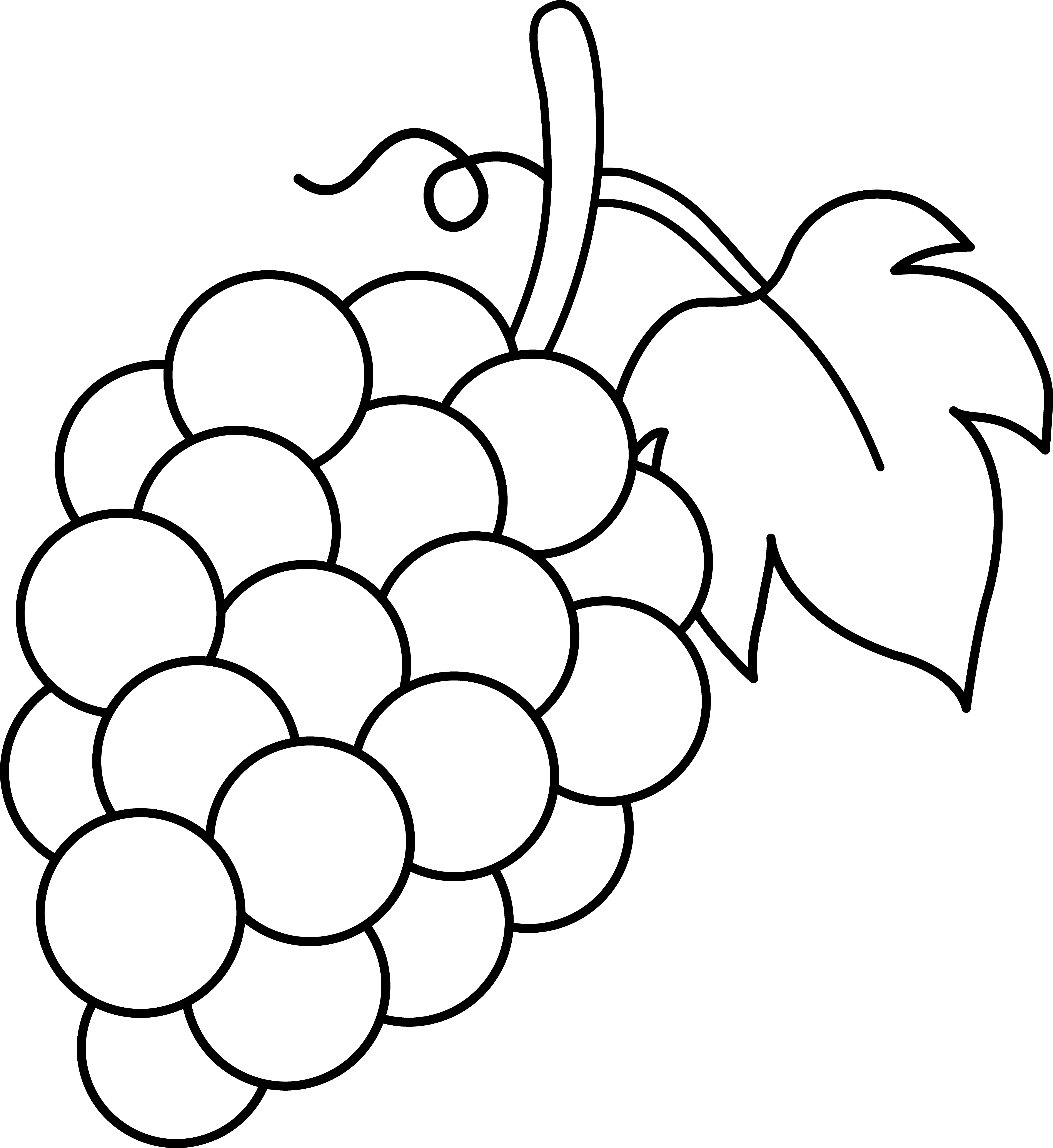 fruits and vegetables black and white clipart panda free