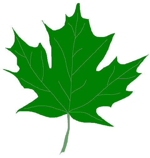 free clipart green leaf - photo #36