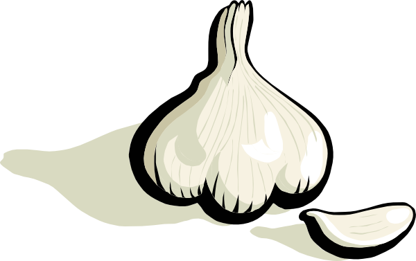 Garlic 20clipart | Clipart Panda - Free Clipart Images