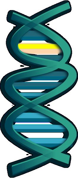 Genetics 20clipart | Clipart Panda - Free Clipart Images