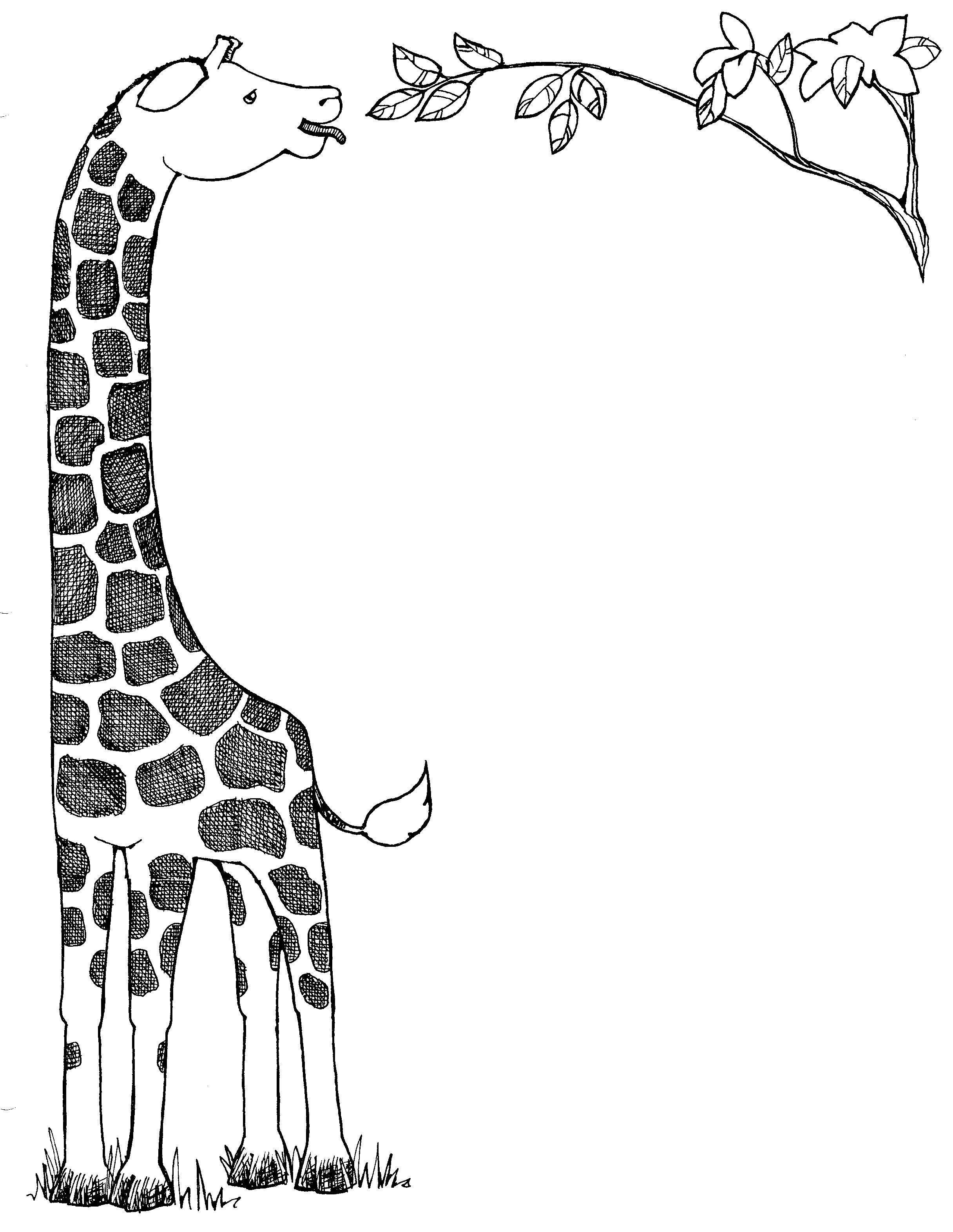 Giraffe Clip Art Black And White Clipart Panda Free Clipart Images