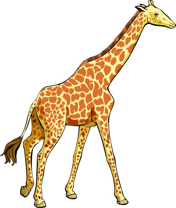 giraffe-clip-art-giraffe-6 jpgGiraffe Clipart For Kids