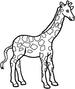 giraffe clip art outline clipart panda free clipart images rh clipartpanda com clipart picture of giraffe clipart giraffe head