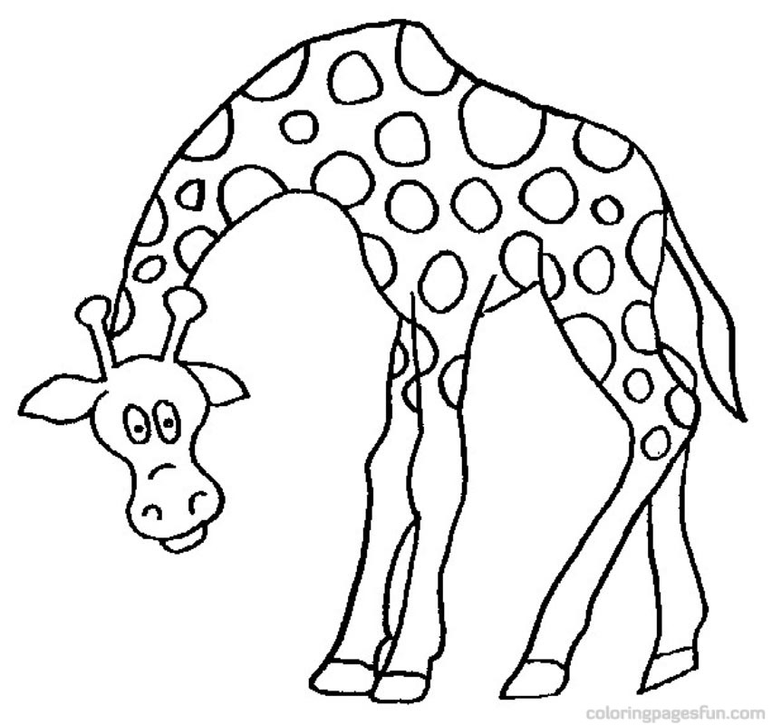 Giraffe Head Coloring Pages Pictures to Pin on Pinterest  PinsDaddy