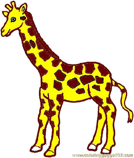 Giraffe Coloring Pages Clipart