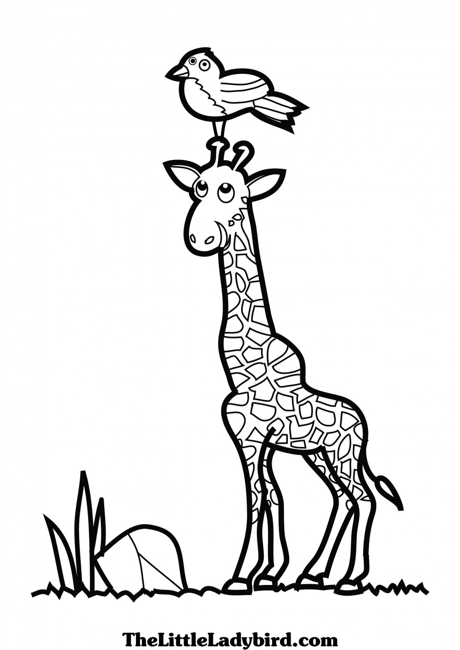 Baby giraffe coloring pages | Clipart Panda - Free Clipart Images