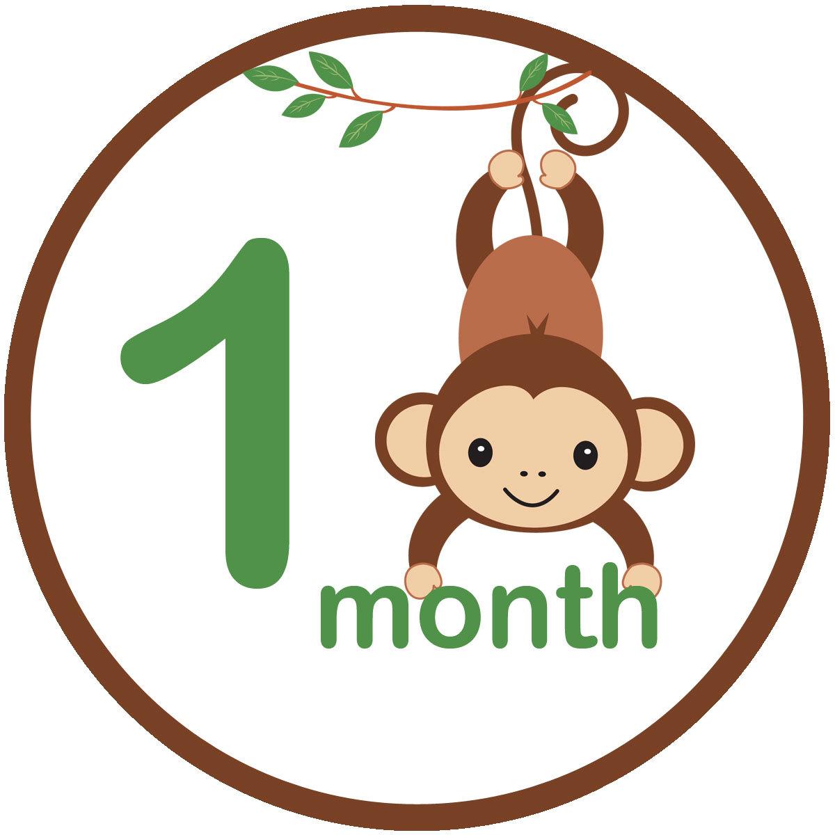 Monkey Baby Shower Cakes For Girl