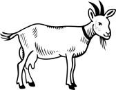 goat 20clipart 20black...