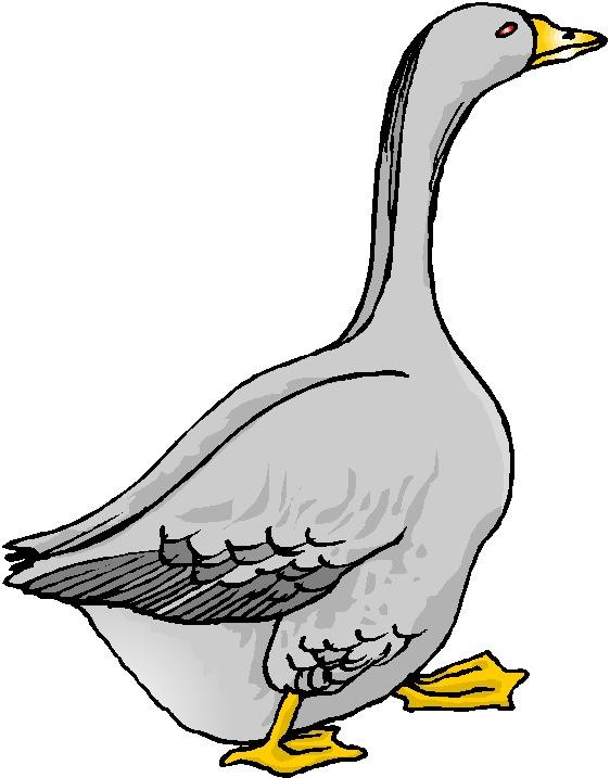 Goose Clip Art Royalty Free | Clipart Panda - Free Clipart ...