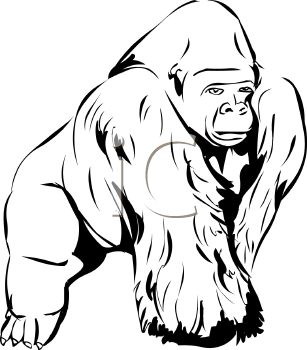 Gorilla clip art black and white