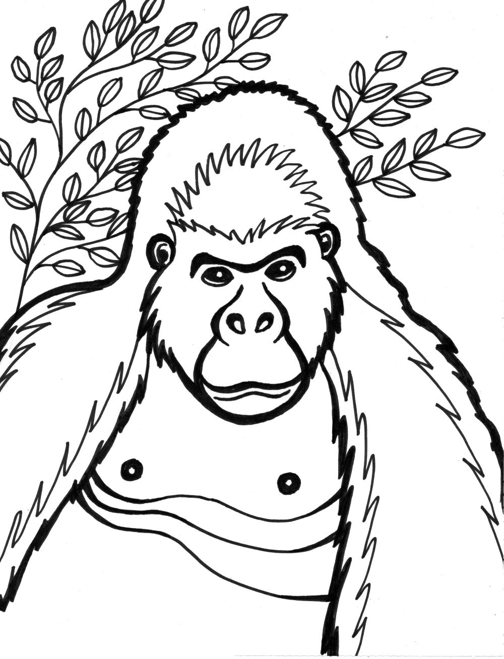 gorilla on the grass gorilla coloring page zoo animals gorilla