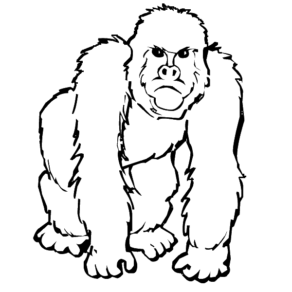 Gorilla Coloring Pages Clipart