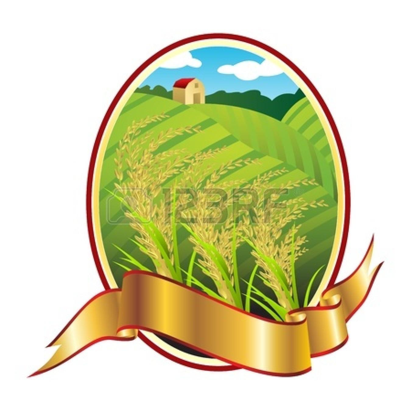 rice grain : Emblem of Thai | Clipart Panda - Free Clipart ...