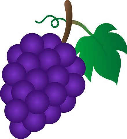 Grape Clip Art