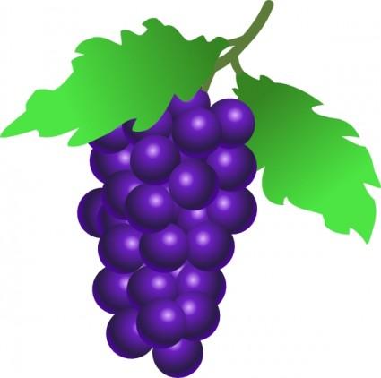 grape 20clipart  Ubas Clipart
