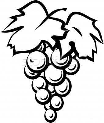 #517451 Grape vine black | Clipart Panda - Free Clipart Images