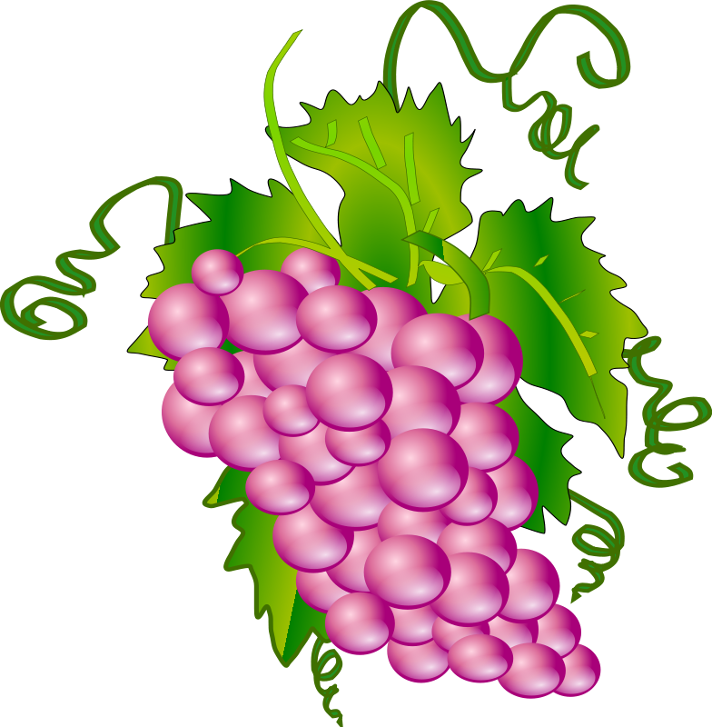 grapes clipart clipart panda free clipart images rh clipartpanda com graph clipart grape clipart black and white