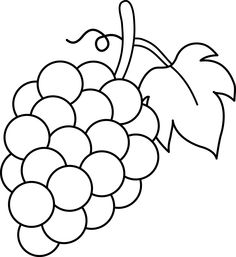 grapes%20drawing