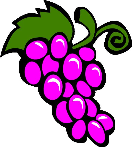 grapes%20vine%20clipart