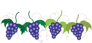 grapevine clipart clipart panda free clipart images rh clipartpanda com grape vine leaves clip art grape vine clip art images