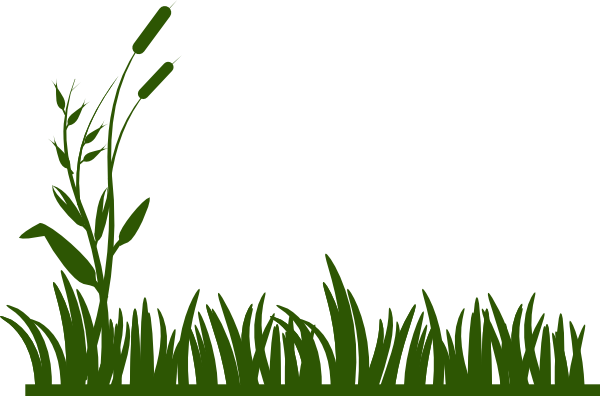 grass%20and%20flowers%20clipart