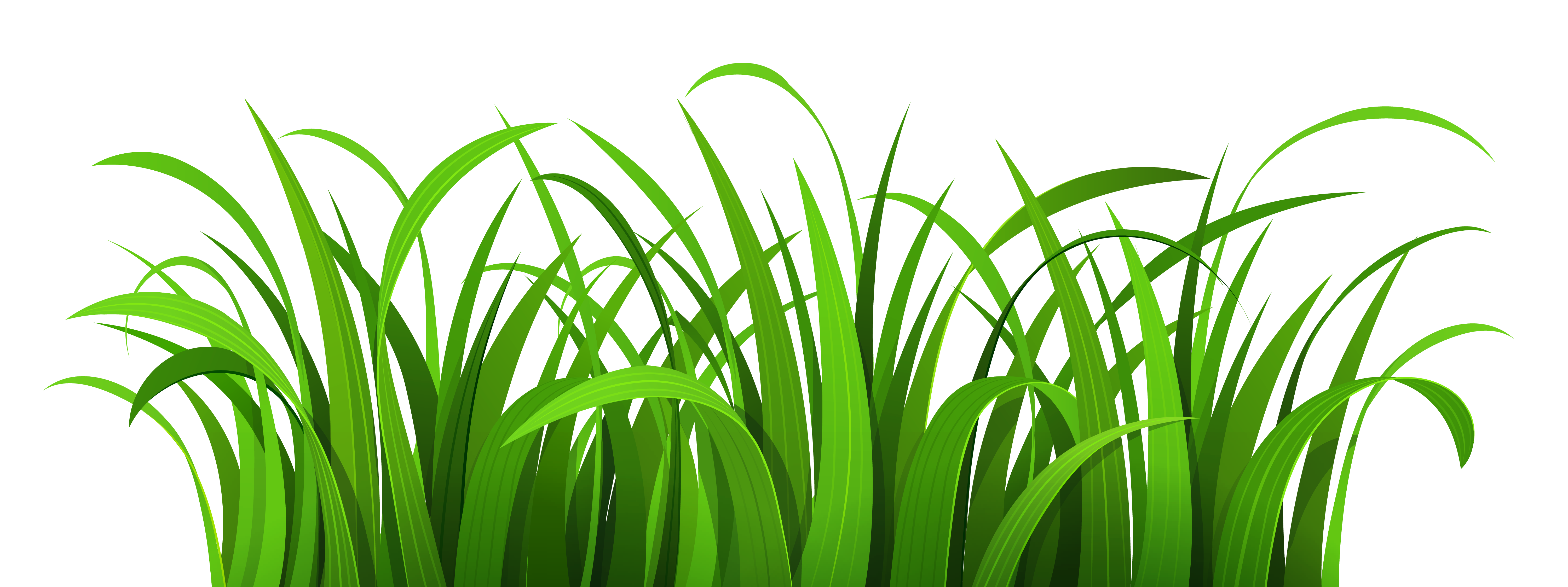 free png Grass Clipart images transparent