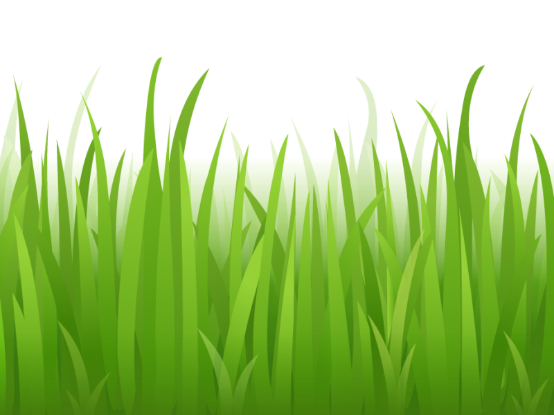 grass clip art free clipart panda free clipart images - 800×600