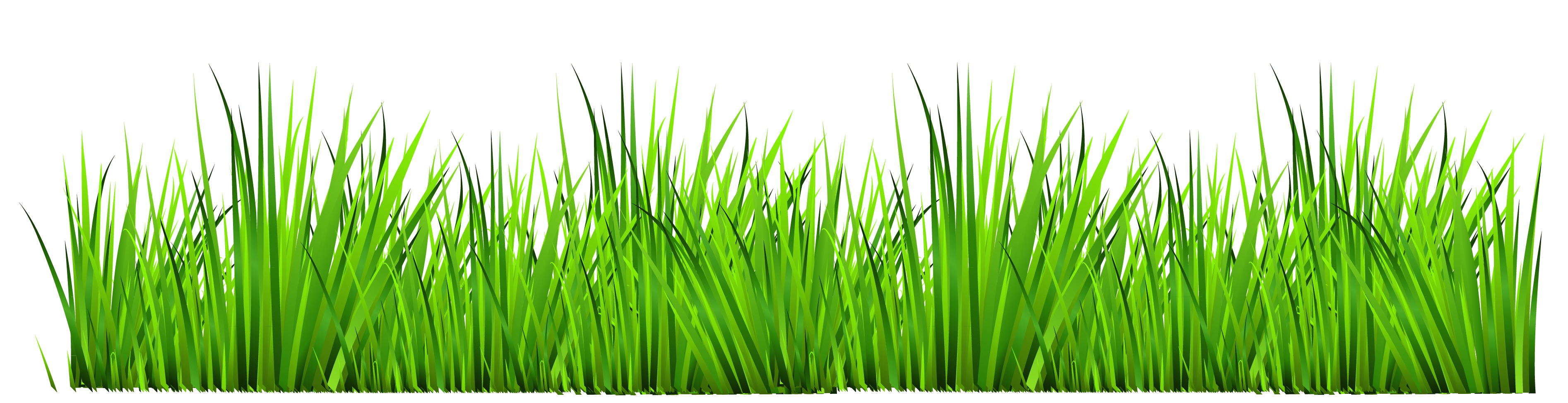 Grass clip art border clipart panda free clipart images for Best grasses for borders