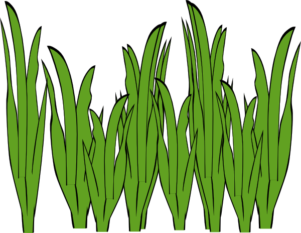 grass clip art free clipart panda free clipart images rh clipartpanda com free clip art glass of water free clipart grass borders